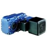 DGP series offsmilgeared motors