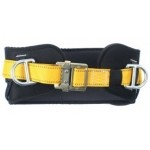 Twin D Restraint Belt 2